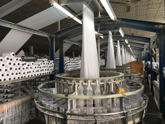 白色筒料生产